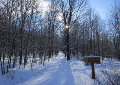 Sentier du silence durant l'hiver
